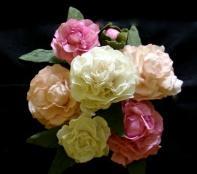 Sugar Flower Shop: Amy Degiulio